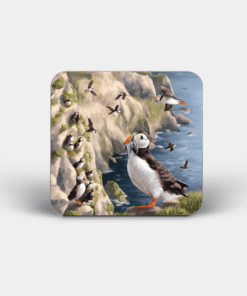 Country Images Personalised Custom Board Coaster Coasters Scotland Highland Collection Puffin Puffins Coastal Birds Wildlife Gift Gifts 4