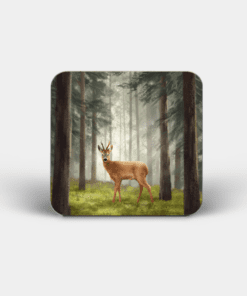Country Images Personalised Custom Board Coaster Coasters Scotland Highland Collection Red Deer Buck Stag Roebuck Roe Gift Gifts