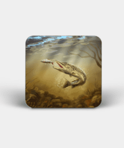 Country Images Personalised Custom Board Coaster Coasters Scotland Highland Pike Angling Fishing Gift Gifts