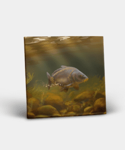 Country Images Personalised Custom Ceramic Tile Tiles Scotland Highland Collection Mirror Carp Angling Fishing Gift Gifts