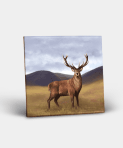 Country Images Personalised Custom Ceramic Tile Tiles Scotland Highland Collection Stag Deer Nature Wildlife Gift Gifts