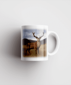 Country Images Personalised Printed Highland Collection Stag Scotland Design Cheap Mug - 2