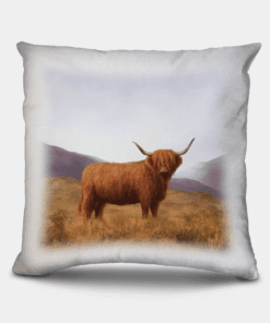 Country Images Personalised Highland Collection Scottish Highland Cow Cheap Linen Cushion Scotland UK 2