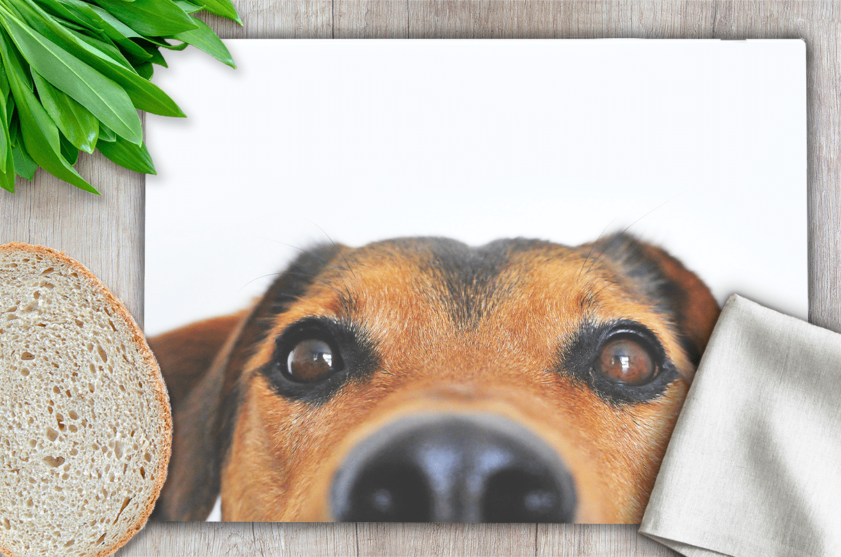 Country Images Personalised Customised Glass Worktop Saver Chopping Cutting Board Kitchen Gift Gifts Idea Ideas Dog Russell Doggy